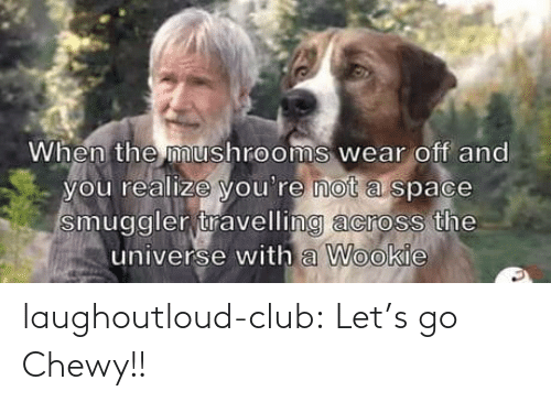 You Realize: When the mushrooms wear off and  you realize you're not a space  smuggler travelling across the  universe with a Wookie laughoutloud-club:  Let's go Chewy!!