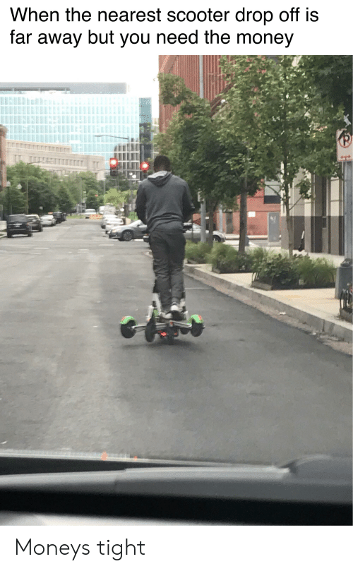 Y DIVISION -Scooter | Scooter Meme on Conservative Memes