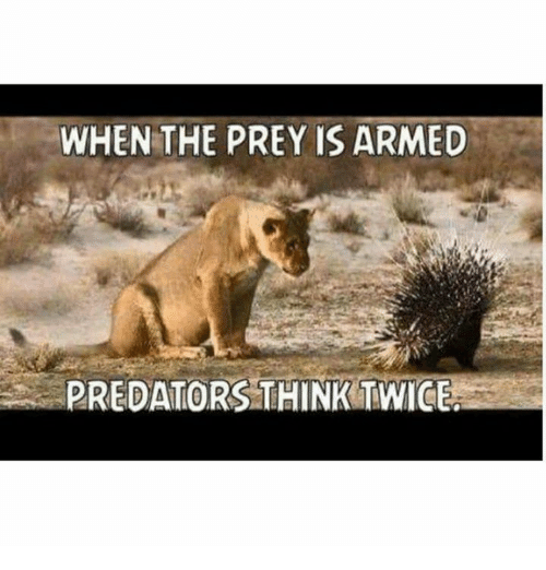 Memes, 🤖, and Predators: WHEN THE PREY IS ARMED  PREDATORS THINK TWICE