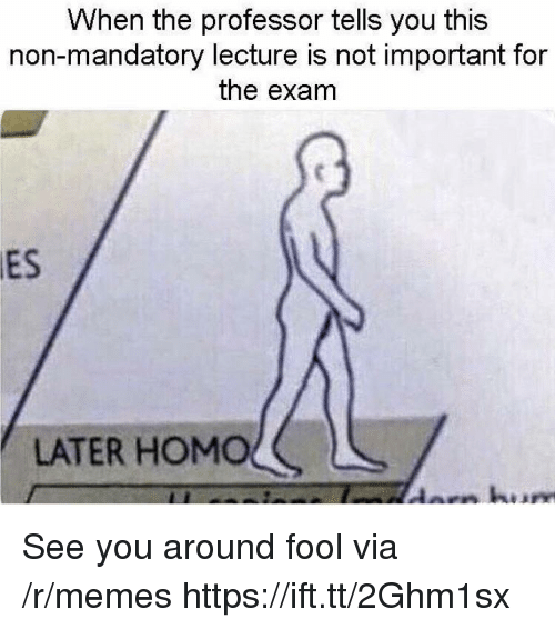 Memes, Via, and You: When the professor tells you this  non-mandatory lecture is not important for  the exam  ES  LATER HOMOく See you around fool via /r/memes https://ift.tt/2Ghm1sx