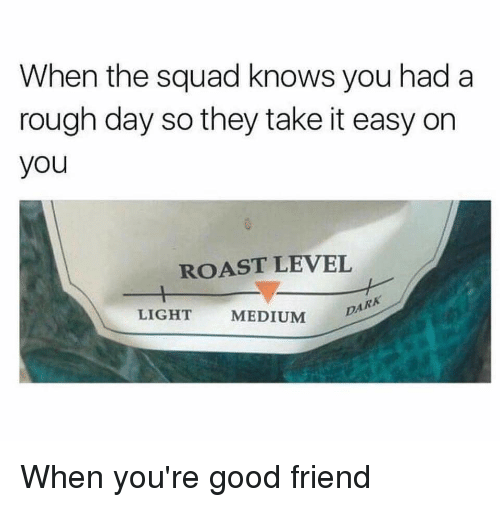Reddit, Roast, and Squad: When the squad knows you had a  rough day so they take it easy on  you  ROAST LEVEL  LIGHT  MEDIUM  DA