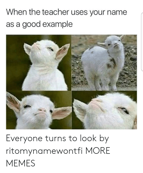 Dank, Memes, and Target: When the teacher uses your name  as a good example Everyone turns to look by ritomynamewontfi MORE MEMES