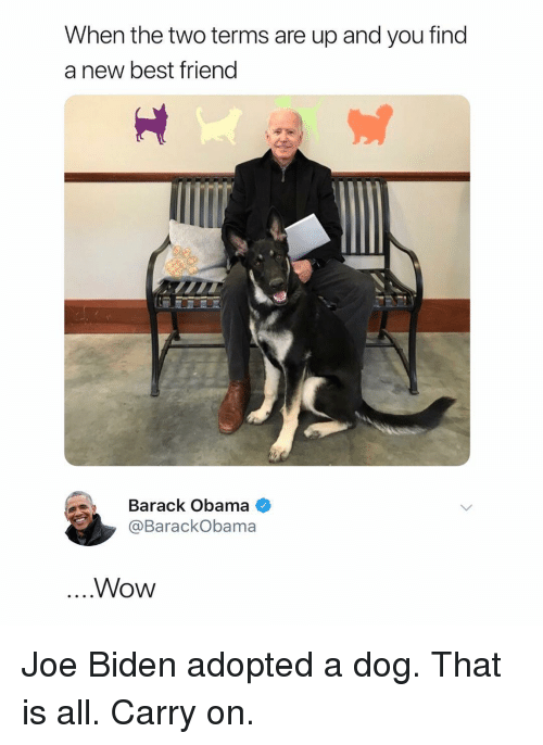 Best Friend, Joe Biden, and Obama: When the two terms are up and you find  a new best friend  Barack Obama  @BarackObama  Wow Joe Biden adopted a dog. That is all. Carry on.