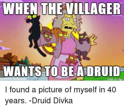 The Villager: WHEN THE VILLAGER  WANTS TO BE A DRUID  made on inngur I found a picture of myself in 40 years. -Druid Divka