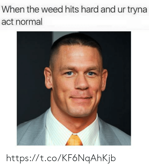 Weed, Act, and Normal: When the weed hits hard and ur tryna  act normal https://t.co/KF6NqAhKjb