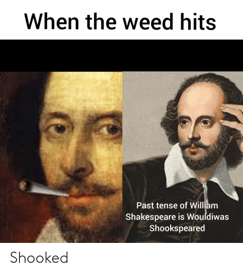 William: When the weed hits  Past tense of William  Shakespeare is Wouldiwas  Shookspeared Shooked