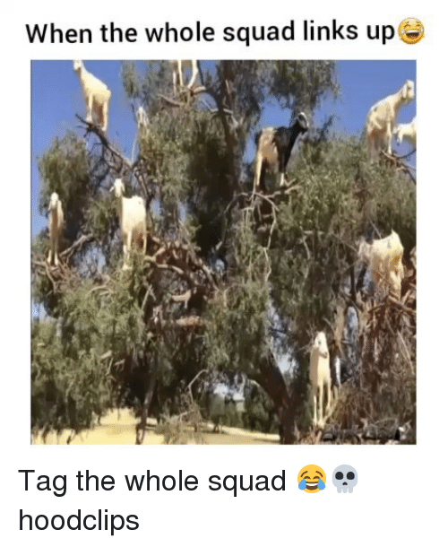 Funny, Squad, and Links: When the whole squad links up Tag the whole squad 😂💀 hoodclips