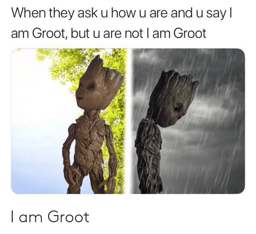How, Ask, and They: When they ask u how u are and u say l  am Groot, but u are not I am Groot I am Groot