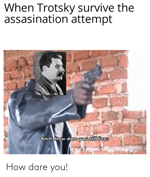 Bitch, History, and Live: When Trotsky survive the  assasination attempt  Bitch. How dare you still live? How dare you!