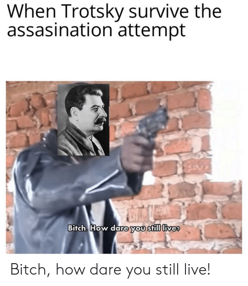 Bitch, Reddit, and Live: When Trotsky survive the  assasination attempt  Bitch. How dare you still live? Bitch, how dare you still live!