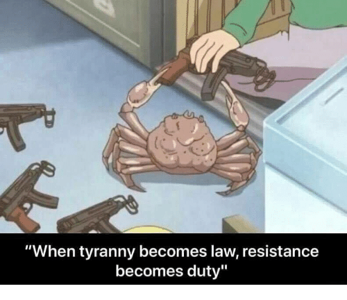 """Tyranny, Resistance, and Law: """"When tyranny becomes law, resistance  becomes duty"""""""