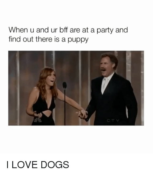 Dogs, Love, and Party: When u and ur bff are at a party and  find out there is a puppy I LOVE DOGS