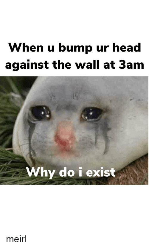 Head, MeIRL, and The Wall: When u bump ur head  against the wall at 3am  Why do i exist meirl