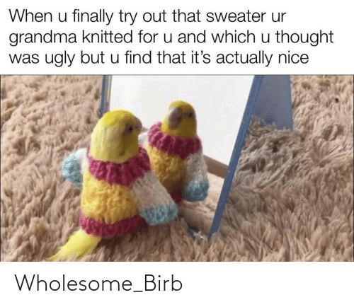 Ugly: When u finally try out that sweater ur  grandma knitted for u and which u thought  was ugly but u find that it's actually nice Wholesome_Birb