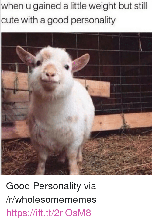 """Cute, Good, and Via: when u gained a little weight but still  cute with a good personality <p>Good Personality via /r/wholesomememes <a href=""""https://ift.tt/2rlOsM8"""">https://ift.tt/2rlOsM8</a></p>"""