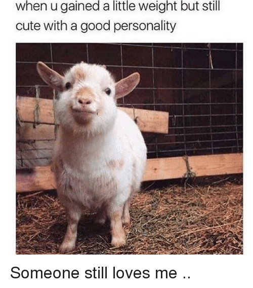 Cute, Good, and Personality: when u gained a little weight but still  cute with a good personality <p>Someone still loves me ..</p>