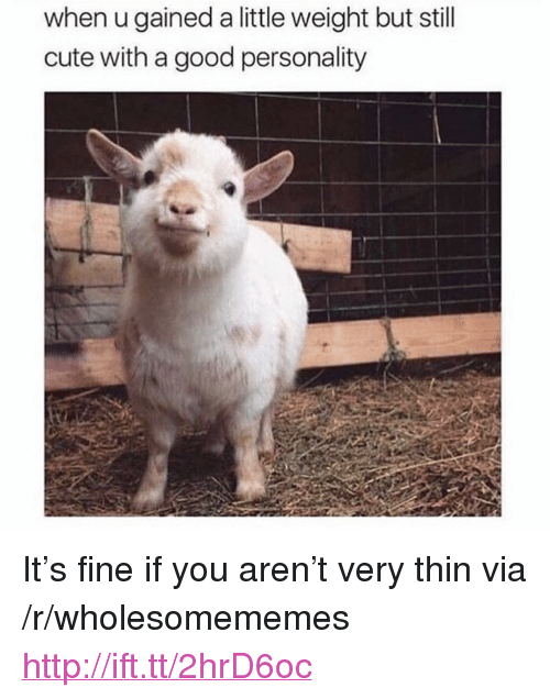 """Cute, Good, and Http: when u gained a little weight but still  cute with a good personality <p>It&rsquo;s fine if you aren&rsquo;t very thin via /r/wholesomememes <a href=""""http://ift.tt/2hrD6oc"""">http://ift.tt/2hrD6oc</a></p>"""