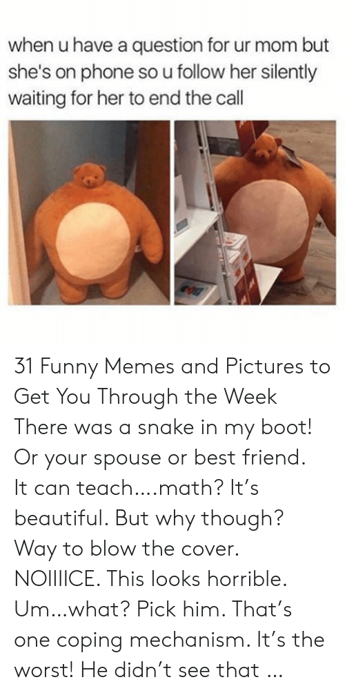 ur mom: when u have a question for ur mom but  she's on phone so u follow her silently  waiting for her to end the call 31 Funny Memes and Pictures to Get You Through the Week There was a snake in my boot! Or your spouse or best friend. It can teach….math? It's beautiful. But why though? Way to blow the cover. NOIIIICE. This looks horrible. Um…what? Pick him. That's one coping mechanism. It's the worst! He didn't see that …
