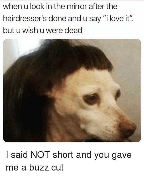 "Funny, Love, and Mirror: when u look in the mirror after the  hairdresser's done and u say""i love it"".  but u wish u were dead I said NOT short and you gave me a buzz cut"