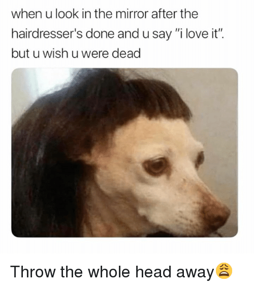 "Head, Love, and Mirror: when u look in the mirror after the  hairdresser's done and u say ""i love it"".  but u wish u were dead Throw the whole head away😩"