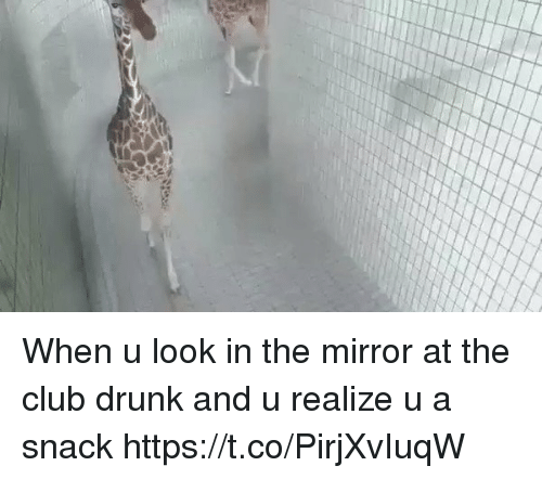 Drunked: When u look in the mirror at the club drunk and u realize u a snack https://t.co/PirjXvIuqW