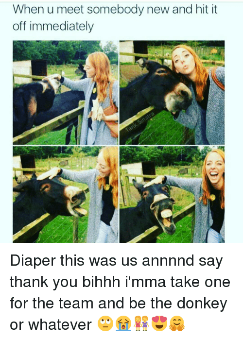 donkeys: When u meet somebody new and hit it  off immediately Diaper this was us annnnd say thank you bihhh i'mma take one for the team and be the donkey or whatever 🙄😭👭😍🤗