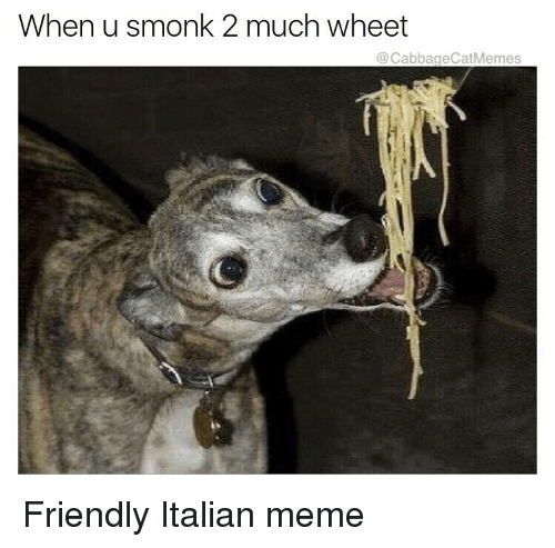 Italian Meme: when u monk 2 much wheet  @CabbageCat Memes Friendly Italian meme