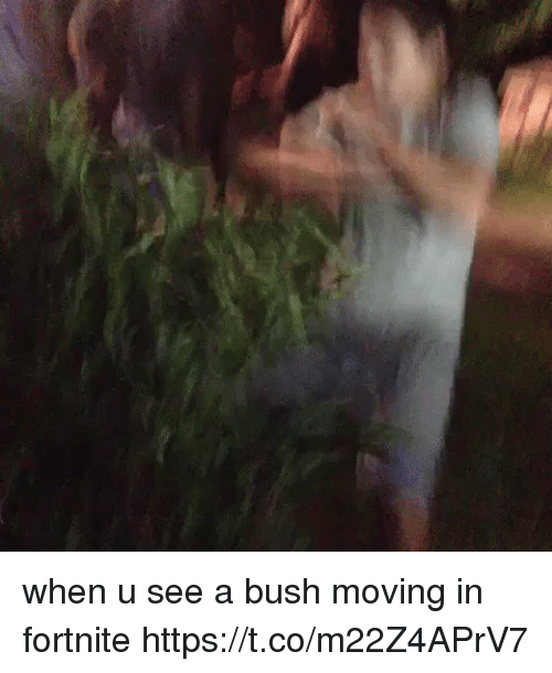 Memes, 🤖, and Bush: when u see a bush moving in fortnite https://t.co/m22Z4APrV7