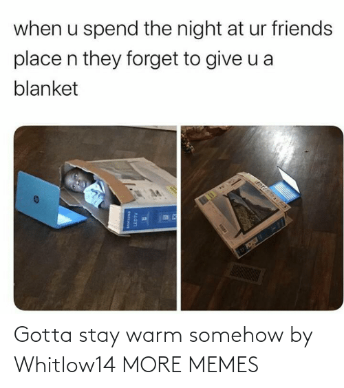 warm: when u spend the night at ur friends  place n they forget to give u a  blanket  EDT  LEDTV Gotta stay warm somehow by Whitlow14 MORE MEMES