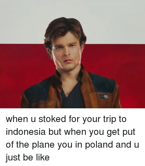 Be Like, Indonesia, and Dank Memes: when u stoked for your trip to indonesia but when you get put of the plane you in poland and u just be like