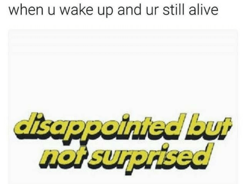 Alive, Disappointed, and Wake: when u wake up and ur still alive  disappointed but  not surprised