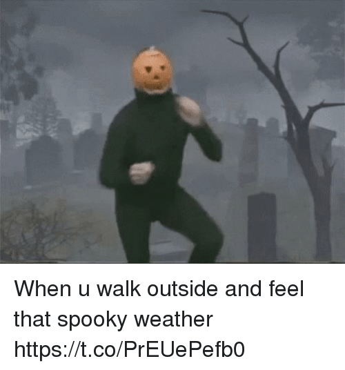 coeds: When u walk outside and feel that spooky weather https://t.co/PrEUePefb0