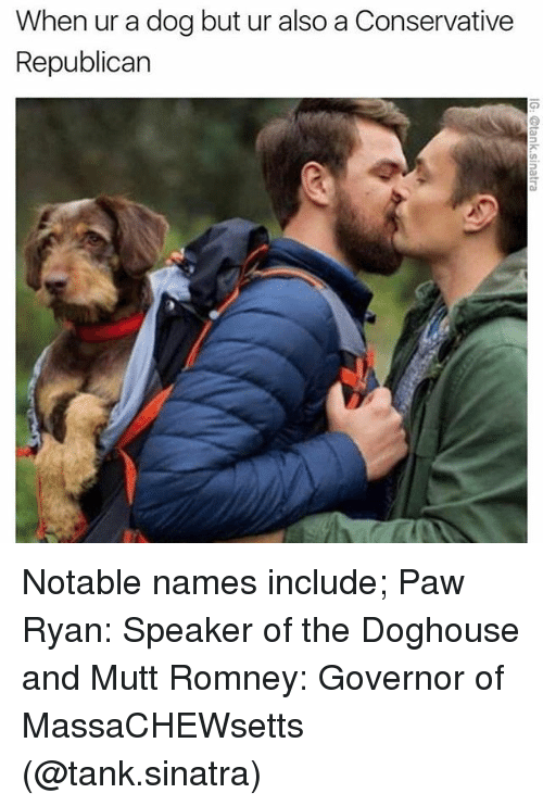 doghouse: When ur a dog but ur also a Conservative  Republican Notable names include; Paw Ryan: Speaker of the Doghouse and Mutt Romney: Governor of MassaCHEWsetts (@tank.sinatra)