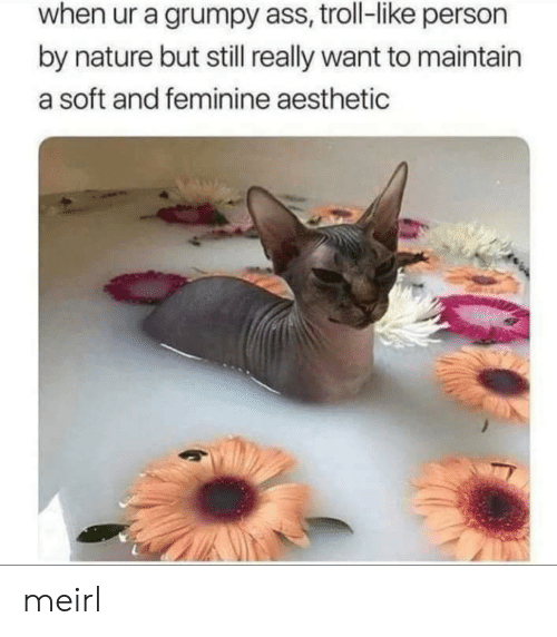 Aesthetic: when ur a grumpy ass, troll-like person  by nature but still really want to maintain  a soft and feminine aesthetic meirl