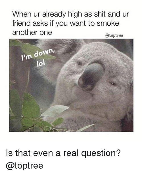Another One, Lol, and Shit: When ur already high as shit and ur  friend asks if you want to smoke  another one  @toptree  m down,  lol Is that even a real question? @toptree