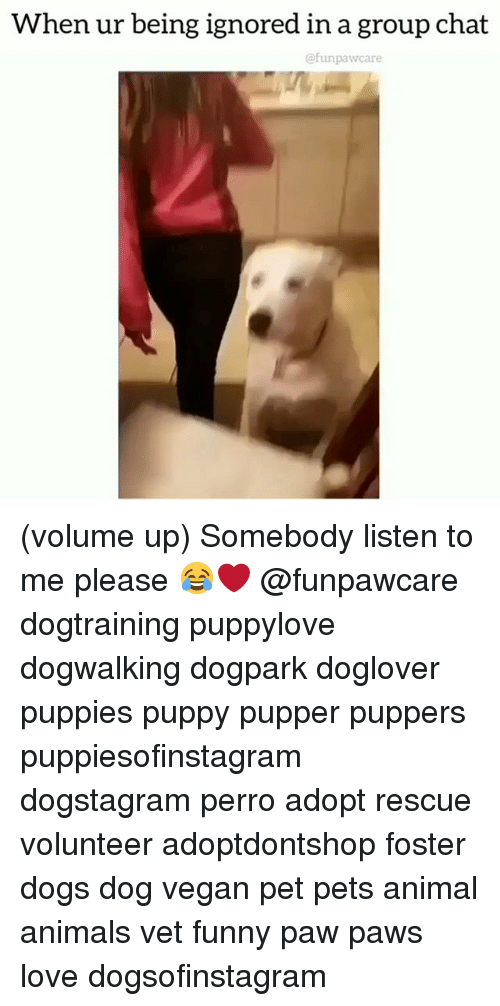 Animals, Dogs, and Funny: When ur being ignored in a group chat  @funpawcare (volume up) Somebody listen to me please 😂❤️ @funpawcare dogtraining puppylove dogwalking dogpark doglover puppies puppy pupper puppers puppiesofinstagram dogstagram perro adopt rescue volunteer adoptdontshop foster dogs dog vegan pet pets animal animals vet funny paw paws love dogsofinstagram