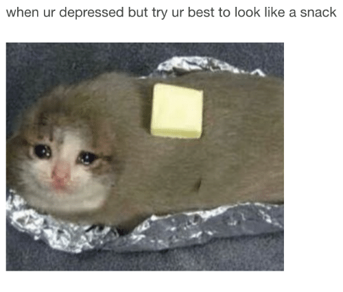 Best, Look, and Like: when ur depressed but try ur best to look like a snack