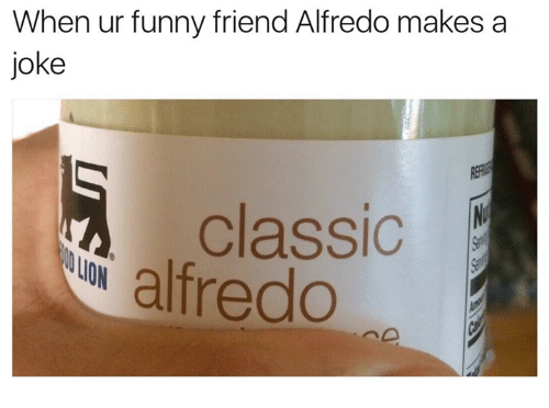 Funny, Lion, and Friend: When ur funny friend Alfredo makes a  joke  classic  alfredo  LION