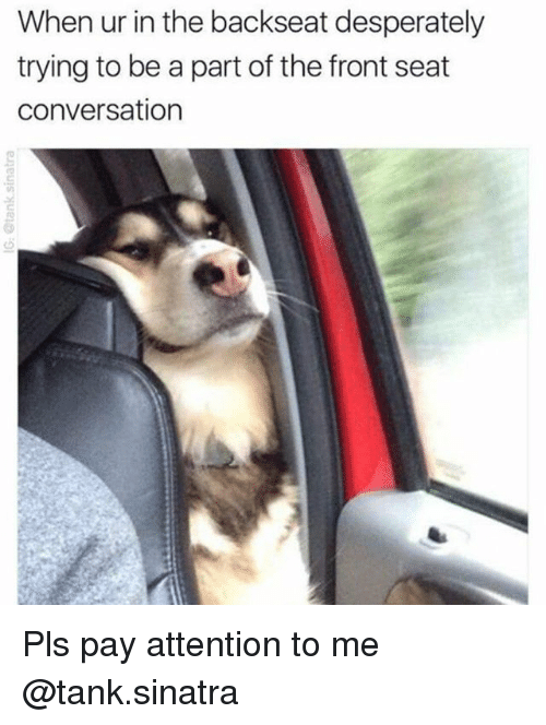 Funny, Girl Memes, and Tank: When ur in the backseat desperately  trying to be a part of the front seat  conversation Pls pay attention to me @tank.sinatra