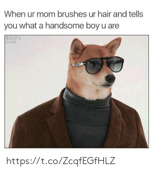 ur mom: When ur mom brushes ur hair and tells  you what a handsome boy u are  4GIFS  .com https://t.co/ZcqfEGfHLZ