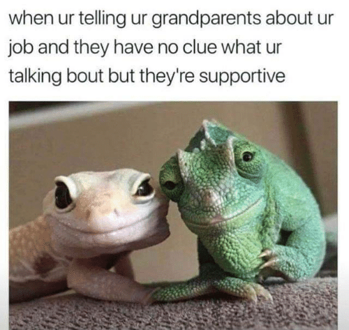 No Clue: when ur telling ur grandparents about  job and they have no clue what ur  talking bout but they're supportive
