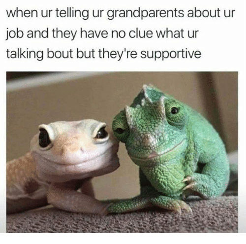 Dank, 🤖, and Job: when ur telling ur grandparents about ur  job and they have no clue what ur  talking bout but they're supportive