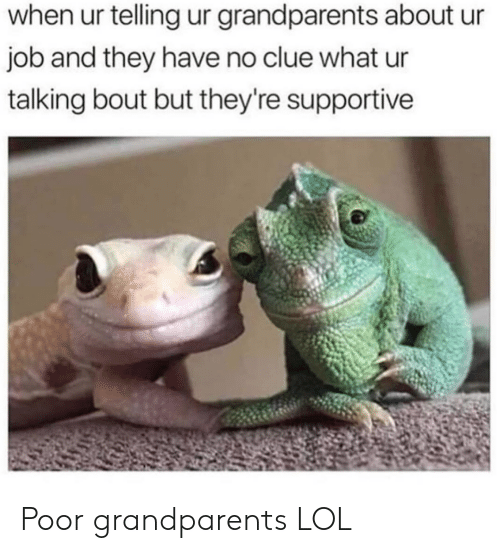Lol, Job, and Clue: when ur telling ur grandparents about ur  job and they have no clue what ur  talking bout but they're supportive Poor grandparents LOL