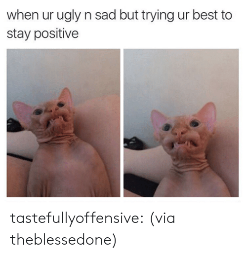 Instagram, Taken, and Tumblr: when ur ugly n sad but trying ur best to  stay positive tastefullyoffensive:  (via theblessedone)