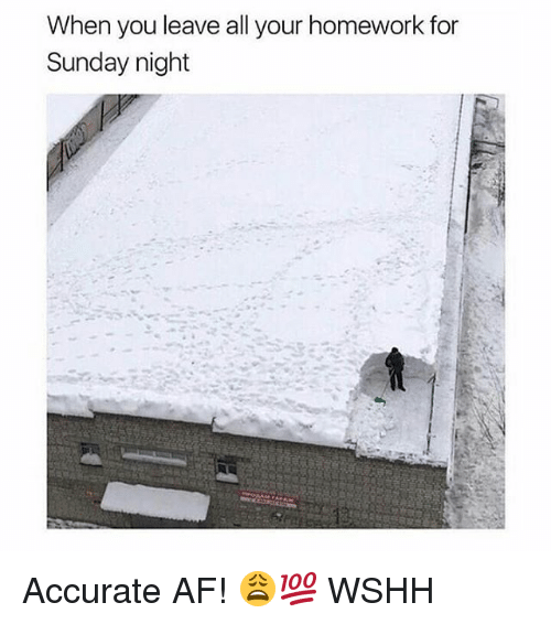 Af, Memes, and Wshh: When vou leave all your homework for  Sunday night Accurate AF! 😩💯 WSHH