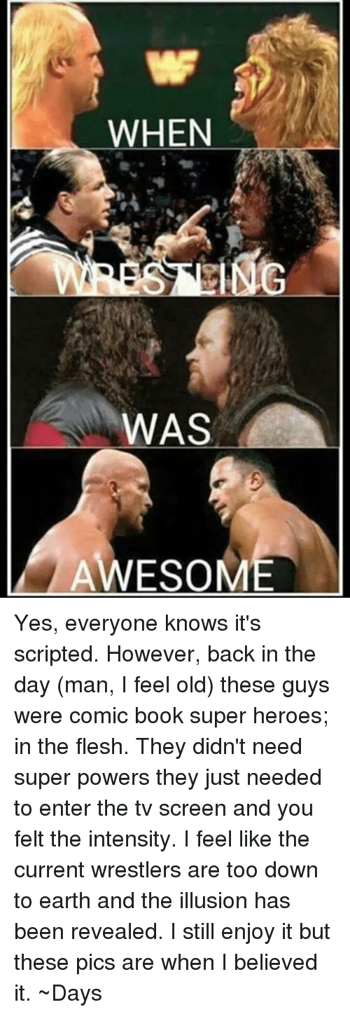 Memes, Book, and Earth: WHEN  WAS  AWESOM Yes, everyone knows it's scripted. However, back in the day (man, I feel old) these guys were comic book super heroes; in the flesh. They didn't need super powers they just needed to enter the tv screen and you felt the intensity. I feel like the current wrestlers are too down to earth and the illusion has been revealed. I still enjoy it but these pics are when I believed it.   ~Days