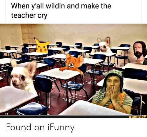 Teacher, Wildin, and Cry: When y'all wildin and make the  teacher cry  tunny.ce Found on iFunny
