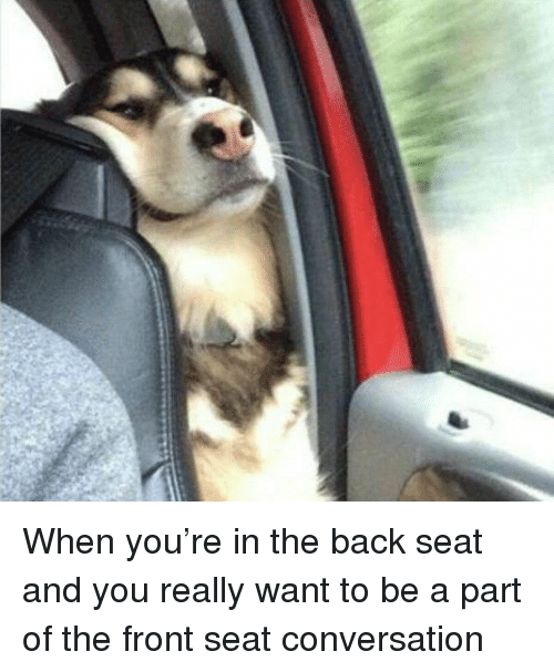Girl Memes, Back, and Seat: When you're in the back seat and you really want to be a part of the front seat conversation