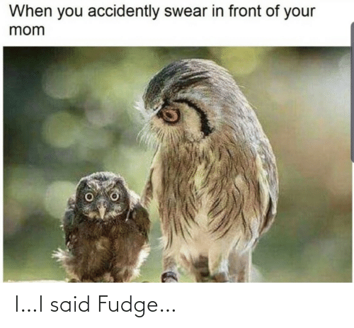 Mom, Fudge, and You: When you accidently swear in front of your  mom I…I said Fudge…