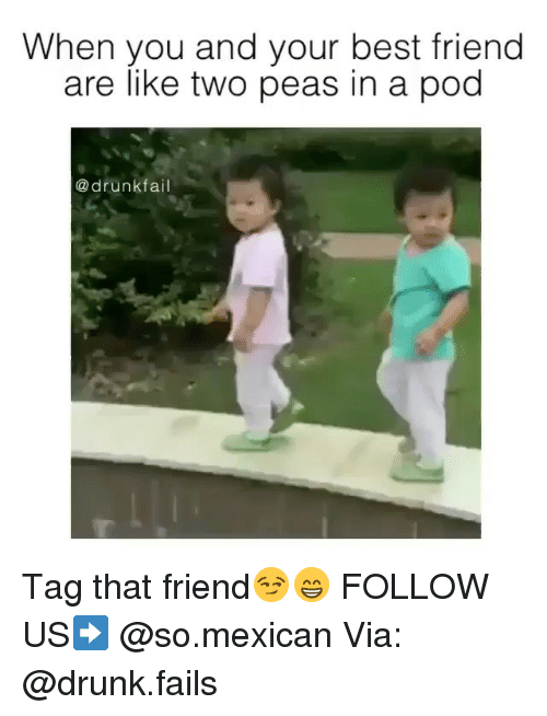 Best Friends Are Like: When you and your best friend  are like two peas in a pod  drunk  fai Tag that friend😏😁 FOLLOW US➡️ @so.mexican Via: @drunk.fails